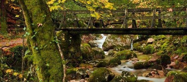 paisaje-turismo-rural-600x264